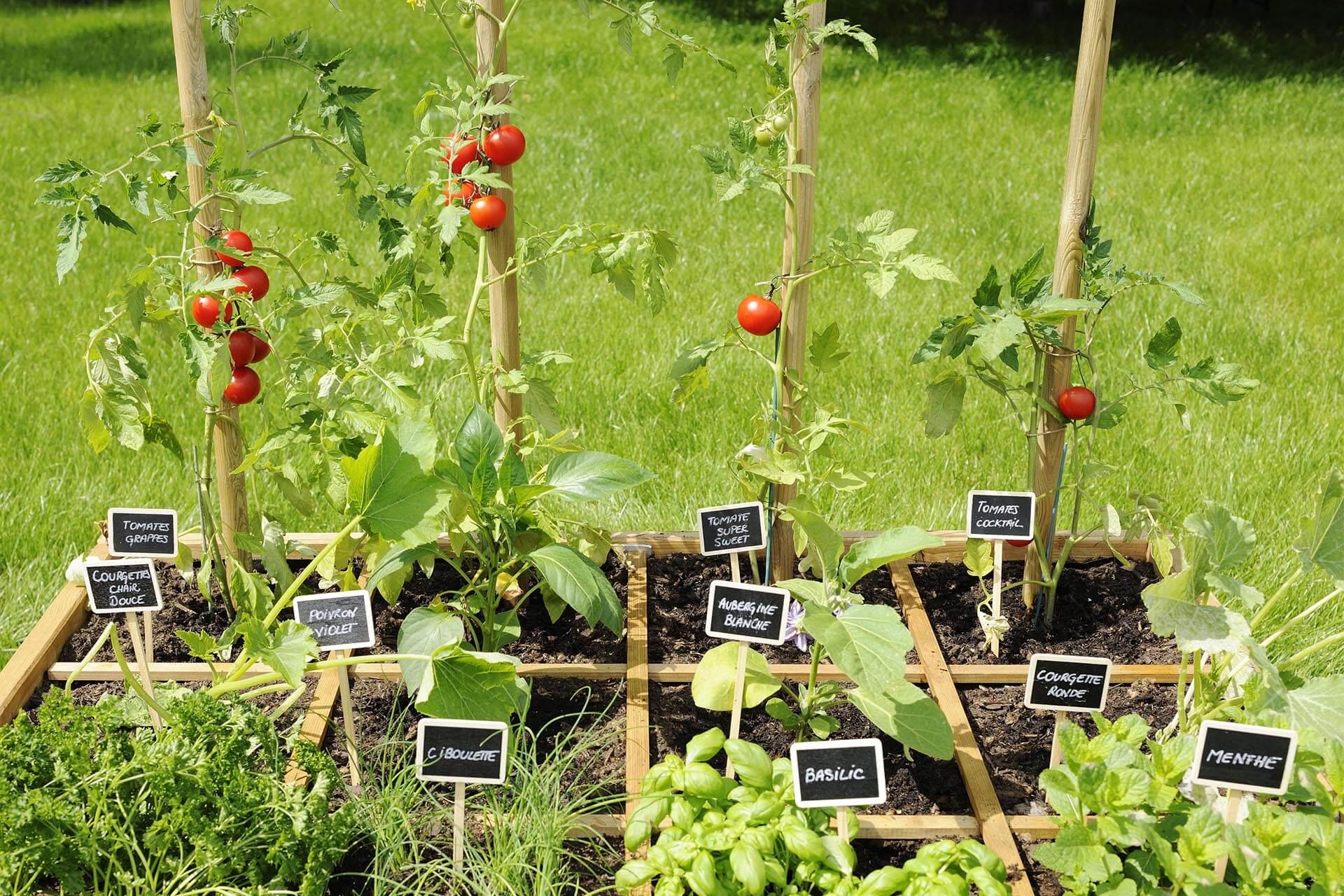 jardinage blog jardipolys 1